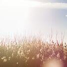 Grassy by Jasper Smits