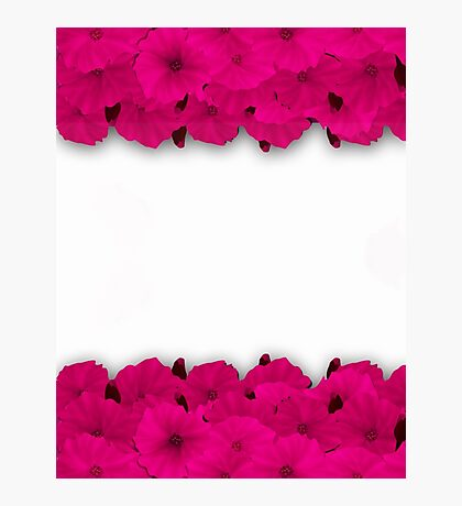 Flower frame. Floral border. Bouquet of pink poppy on white background. Photographic Print
