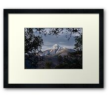 Winter in Montseny Framed Print