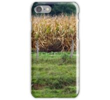 As Tall As An Elephant's Eye... iPhone Case/Skin