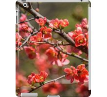 Spring Blossoms 6 iPad Case/Skin
