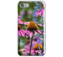 Cone Flowers 1 iPhone Case/Skin