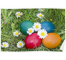 Easter Eggs in the Grass Closeup Poster