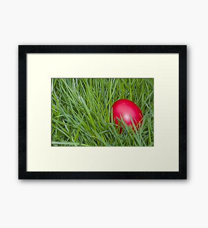 Red Easter Egg in the Grass Closeup Framed Print