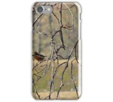 Two for the price of one iPhone Case/Skin