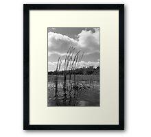 On 9-Mile Pond Framed Print