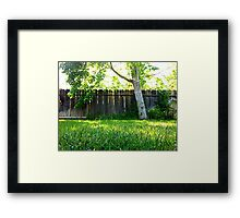 Green backyard Framed Print