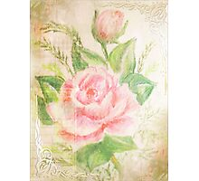 Rose with petals sweet. Photographic Print