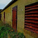 Rusted-Abandoned by Perggals© - Stacey Turner