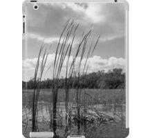 On 9-Mile Pond iPad Case/Skin