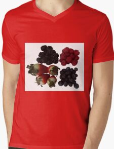 Fruit Mens V-Neck T-Shirt