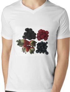 Fruit Mens V-Neck T-Shirt