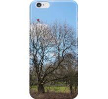 Lost Kite iPhone Case/Skin