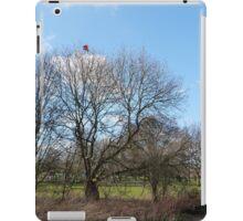 Lost Kite iPad Case/Skin
