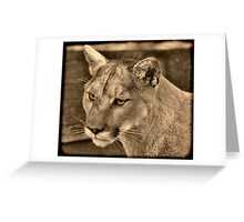 Panther Portrait  Greeting Card