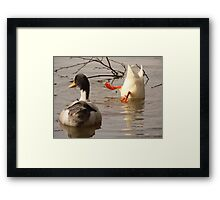 Turn the other cheek Framed Print