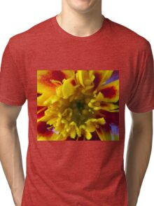 Spring Bloom Tri-blend T-Shirt