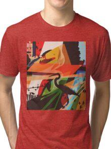 For The Birds Skate Deck Design Tri-blend T-Shirt