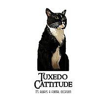 Tuxedo Cattitude - It's always a formal occasion Photographic Print