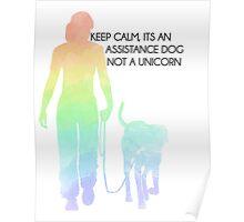 Keep Calm, It's An Assistance Dog Not A Unicorn Poster