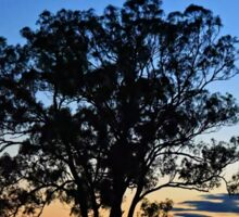 Silverdale Sunset Series (3), NSW, Australia Sticker