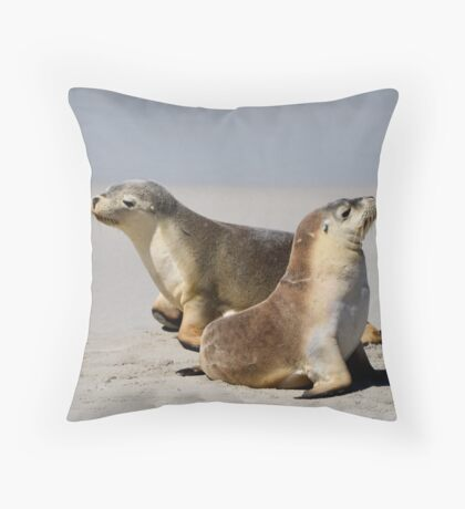 Seal Pups Throw Pillow