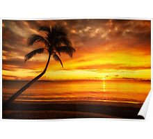 Fijian Sunset with Coconut Palm Silhouette Poster