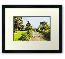 creek in a sunny day Framed Print