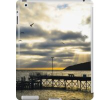 Christmas Cove, Penneshaw South Australia iPad Case/Skin