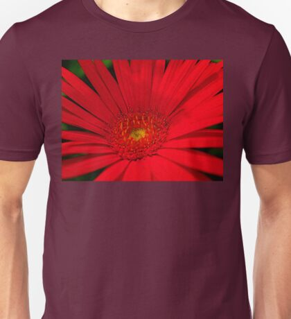 South African Daisy Unisex T-Shirt