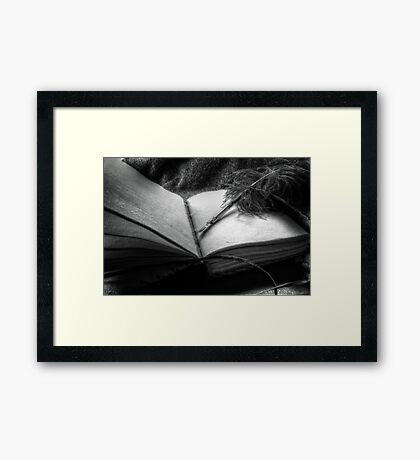 Quill and Pen Framed Print