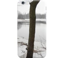 River in a winter landscape iPhone Case/Skin