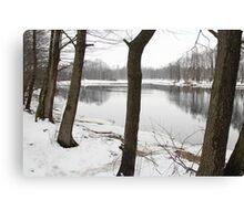 River in a winter landscape Canvas Print