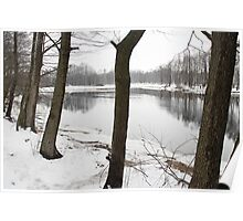 River in a winter landscape Poster