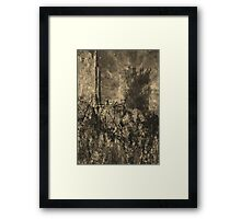 TH22 Framed Print