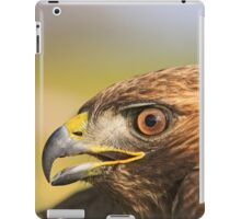 Red Tail Hawk - Family:  Accipitriformes iPad Case/Skin