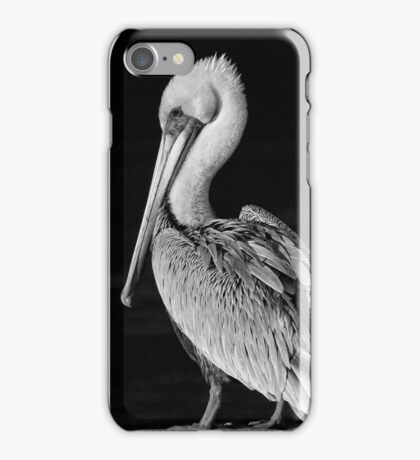 Pelican Portrait In Black and White iPhone Case/Skin