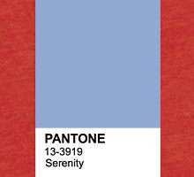 Pantone Serenity Tri-blend T-Shirt
