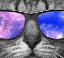 Space Kitty Sticker