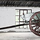 Old antique cart in a meuseum at Majuba Mountain - South Africa by Qnita