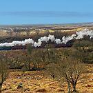 Flying Scotsman - North York Moors by Mark Baldwyn