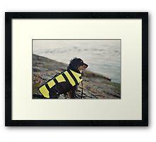 'Lifejacket' Framed Print