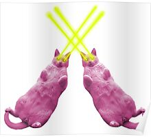 Lazer Cats Duo Poster
