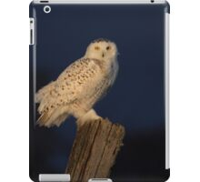 Memorable morning iPad Case/Skin