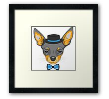 Hipster cute dog Chihuahua Framed Print