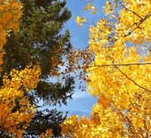 Autumn Foliage Sticker