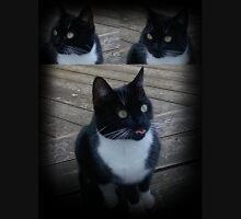 Cat - Tuxedo - Black and White Unisex T-Shirt