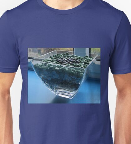 Blue Window Display Unisex T-Shirt