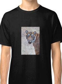 Young Male Tiger Closeup Classic T-Shirt