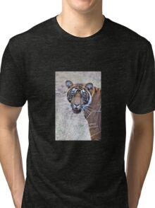 Young Male Tiger Closeup Tri-blend T-Shirt